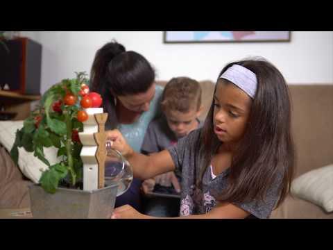 Entre virtuel et réel, Botaki reconnecte les enfants à la nature !